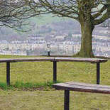 New Benches in Alexandra Park