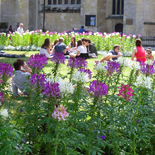 Bath public Spaces